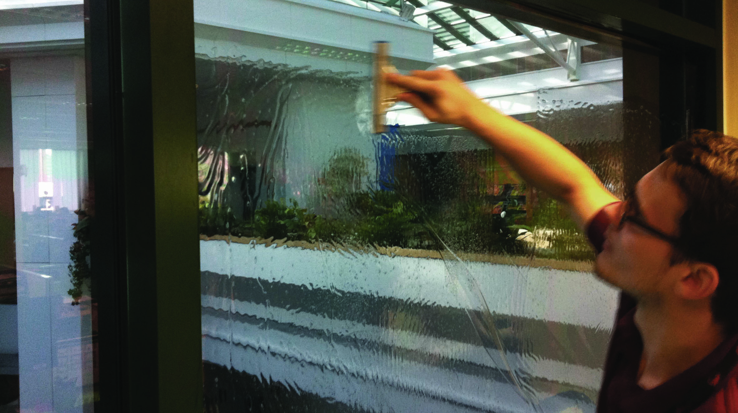 Quality window film direct. Featured Image